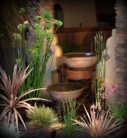 fountain display with plants